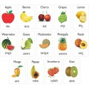 MFM TOYS Fruits and Dry-Fruits Bilingual (Hindi+English) Magnetic Flashcards